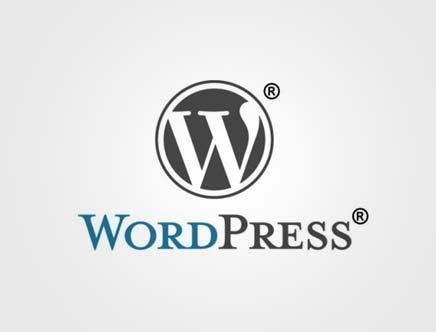 WordPress 调用热门tag标签关键字